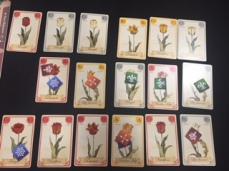 tulipbubble-gacetableros